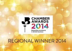 Northern Lights Wins at the Chamber Business Awards